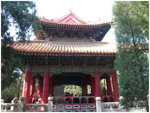 Shandong02-5.jpg